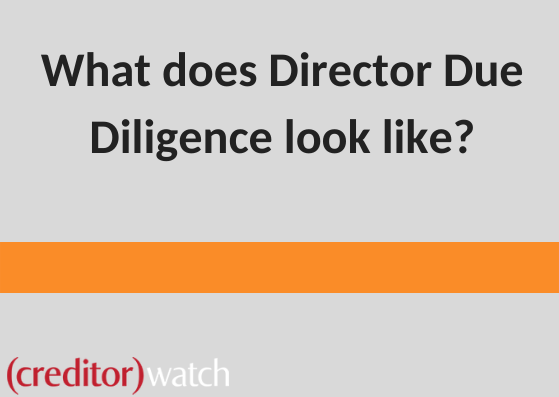 What does Director Due Diligence look like?